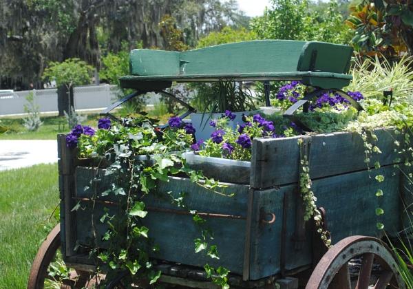Wagon Garden by kl0verleaf