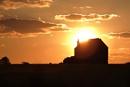 sunset farm by Satiny