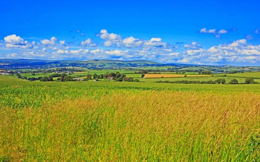 The Beautiful South Hams, Devon
