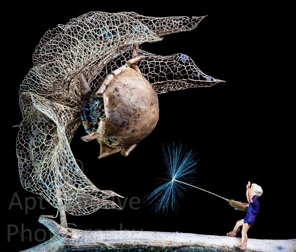 Expectro Dandelionus by blastedkane