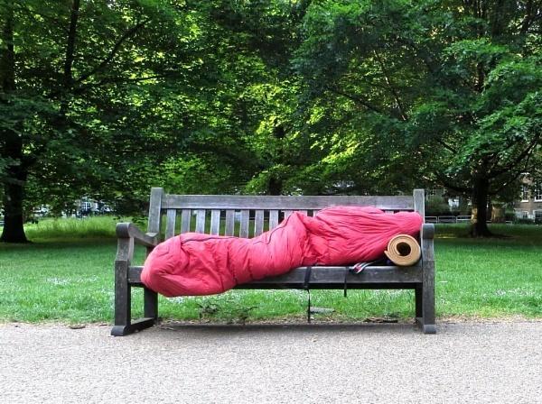 Park Sleeper