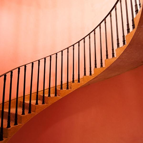 Pink Curves by dandeakin