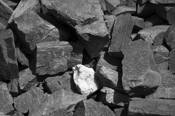 Mono Rocks by WorldInFocus
