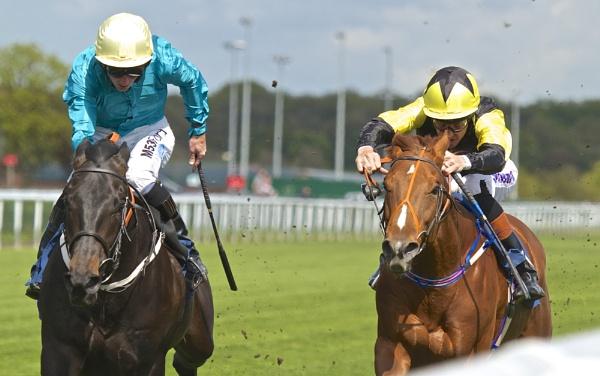 Horse Power full On by altosaxman