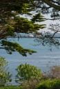 NOTHE Gardens Weymouth