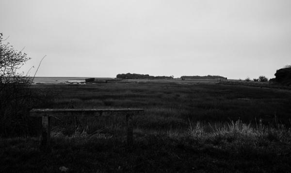 Landscape by Bingsblueprint