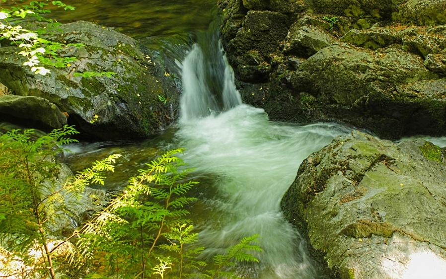 River Erm, Ivybridge, Devon