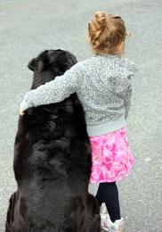 Dog, a little girl's best friend...