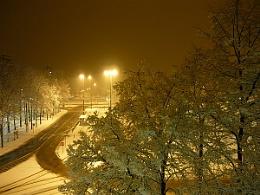 Snowy midnight
