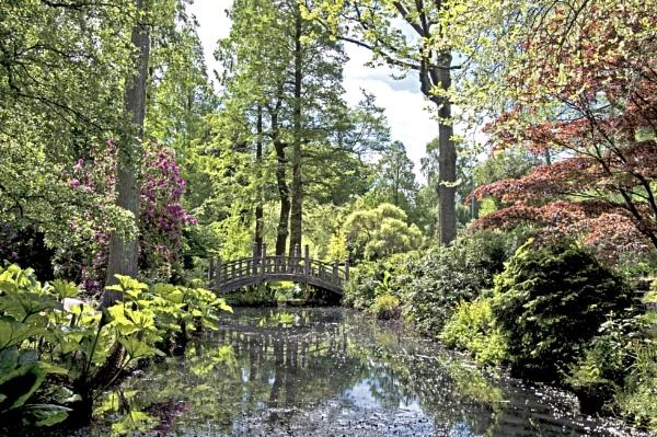 Birmingham University Botanical Gardens by trevaze
