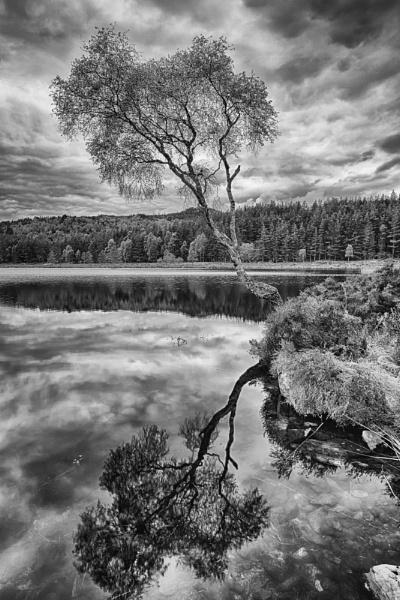 Loch Innis Gheamhraidh, Glen Affric, Scotland by Colin_Leslie
