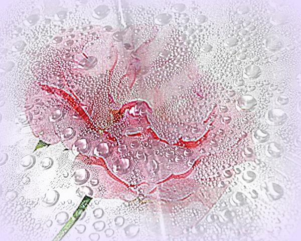 rainy day by dawnmichelle