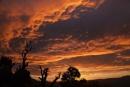 Sunrise in the Alpujarras