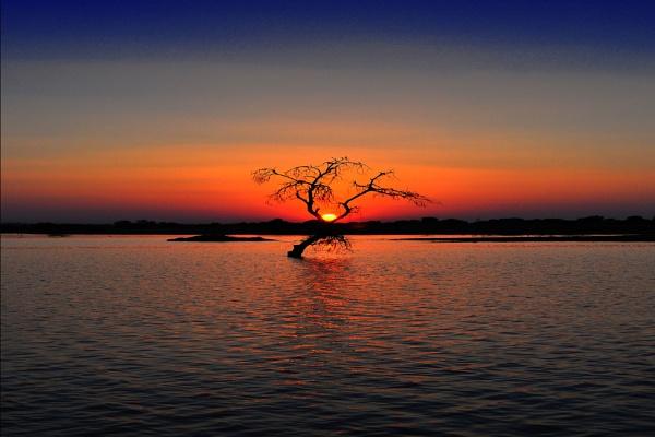 One Tree Lake Sunset by konu