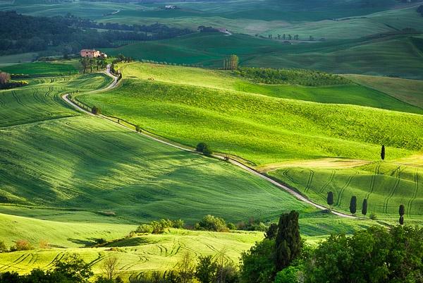 Gladiator fields by Phil_Bird