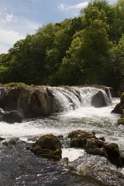 Cenarth Falls by moiral