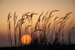 Swedish west coast sunset