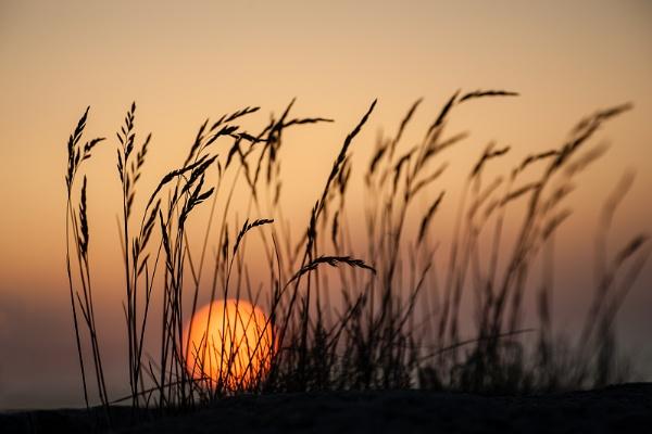 Swedish west coast sunset by blomman
