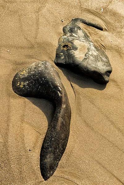 Beach stones by mugshotmyk
