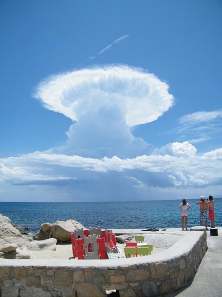 Mushroom on Coast