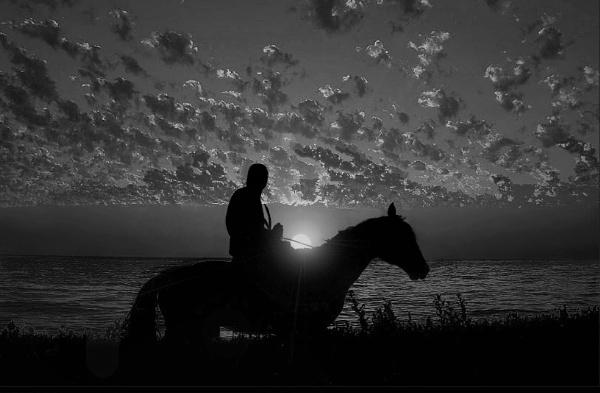 A lone Horseman by ValeryAst