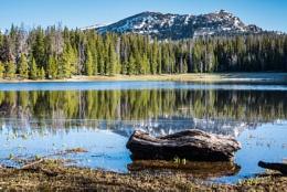 Lilly lake