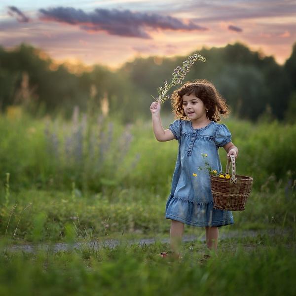 Flower trail by ZanetaFrenn