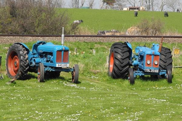 Tractors by lenocm