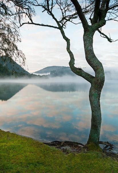 Rotorua by possumhead