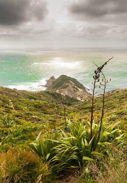 Cape Reianga by possumhead