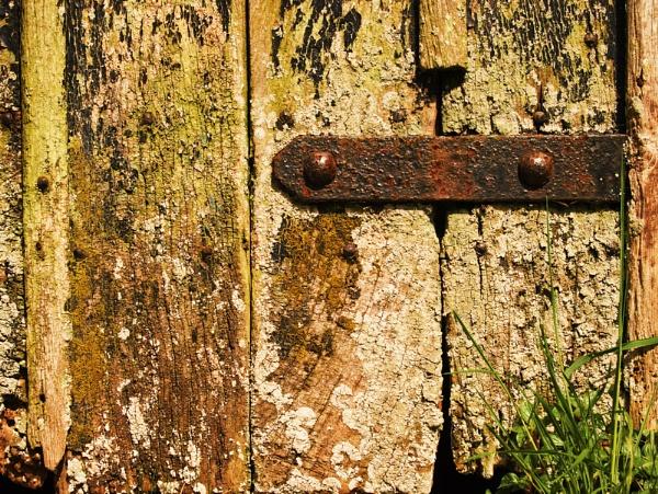 The hinge. by franken