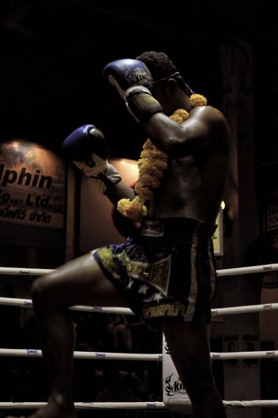 Thai Boxer by robmann72