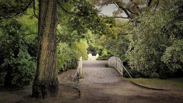 enchanted bridge by atenytom