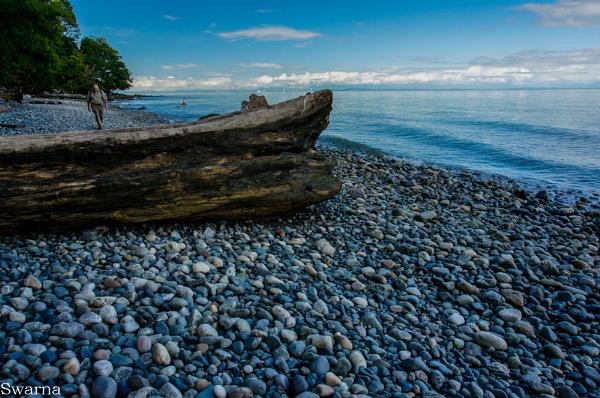 Wreck Beach II - Vancouver BC by Swarnadip