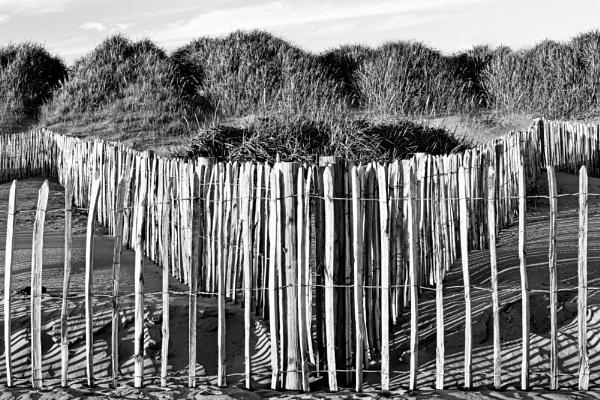 The Dunes by WeeGeordieLass