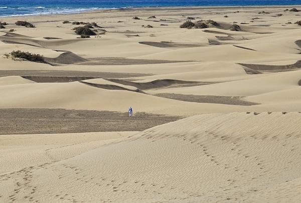 I love the beach! by RobertTurley