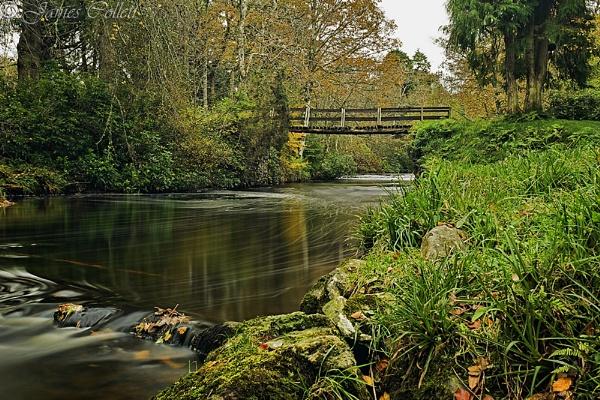 Bridge in Bridgend Woods, Islay, Argyll by jcollett