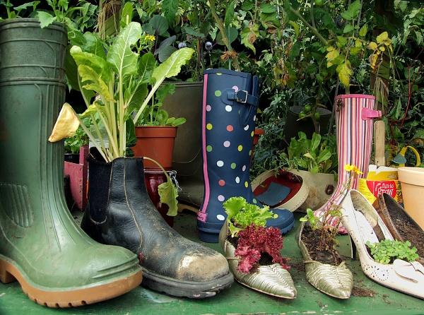 Garden Recycling by pamelajean