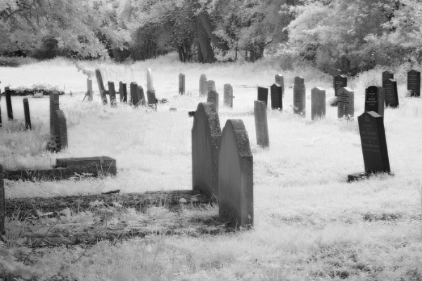 Grave Yard by john thompson