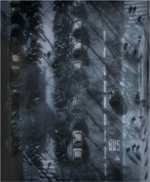 Walking Home in the Winter Sun by silverbells