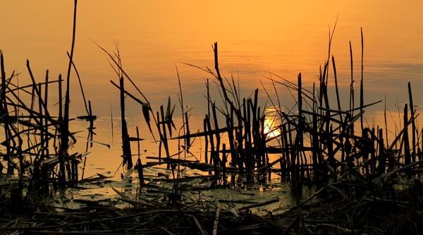 Waterwoods Sunset by Hermanus