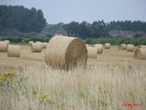 hay bales in tilney by jenny007