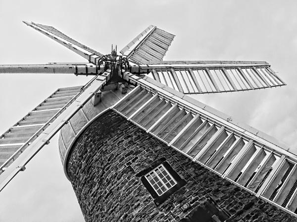 windy miller\'s pad by jacks_19