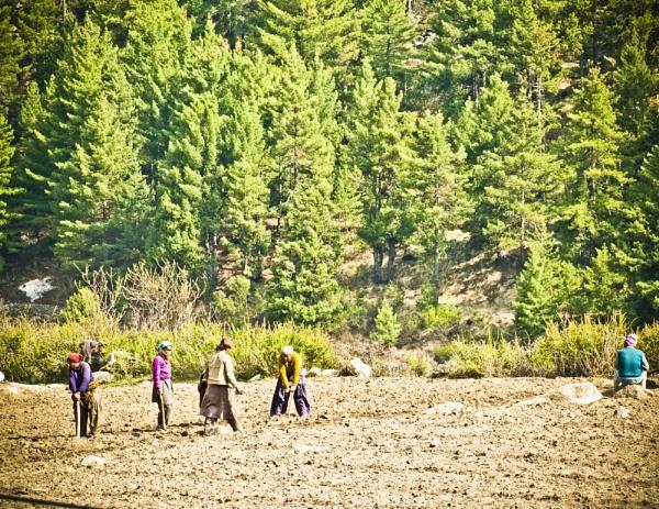 the farmers of Chitkul .. by prabirsenuk