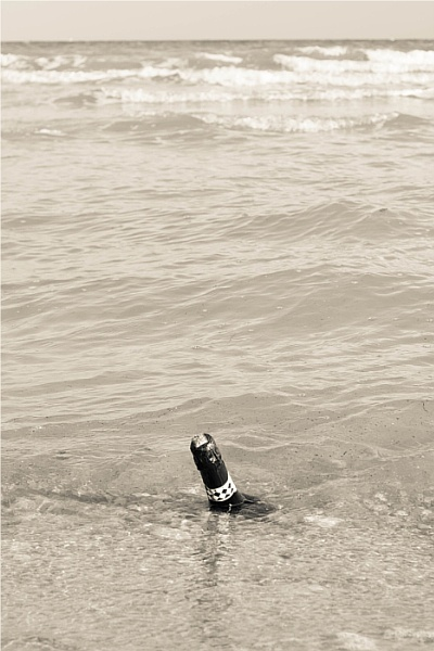 Message in a Bottle. by mwoods