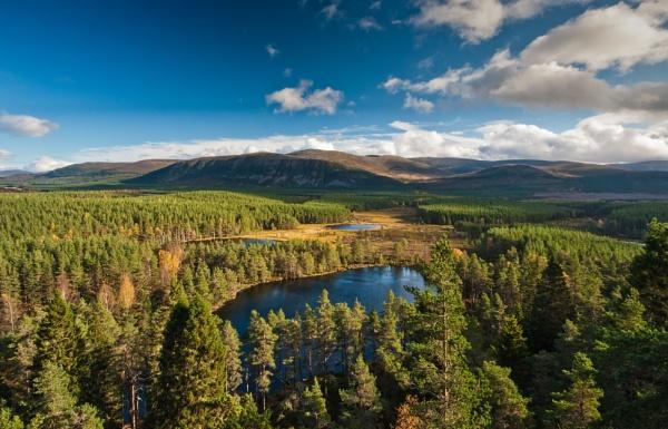 Uath Lochans, Inshriach Forest, Scotland by Colin_Leslie
