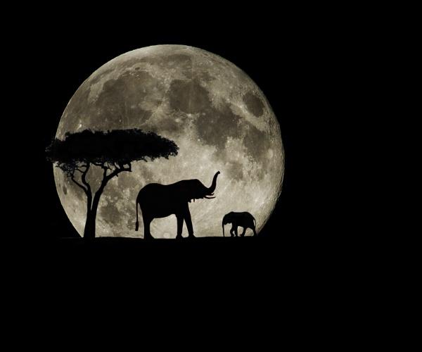 Super Moon Safari by rowejay