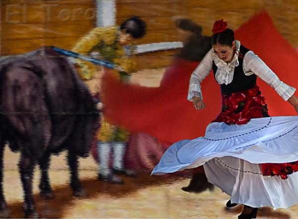 Flamenco by ajhollingbery
