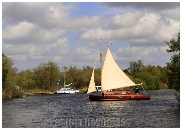 Norfolk Broads (1) by pamreynolds