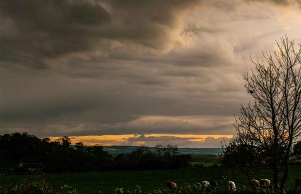Yorkshire Skyline (1) by DavidMosey